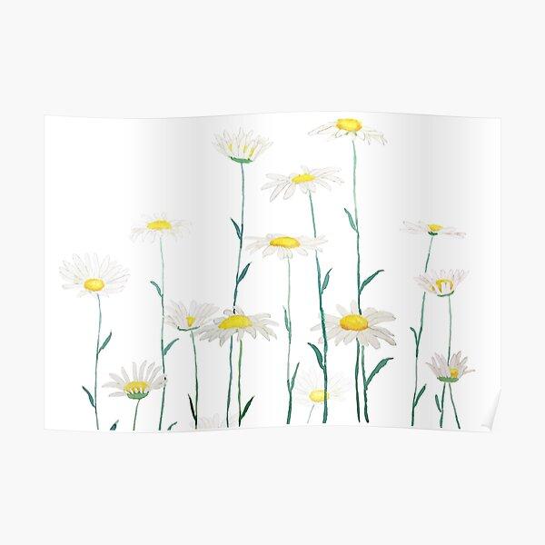 white daisy branch watercolor horizontal Poster
