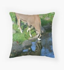 Is this a Unicorn Throw Pillow
