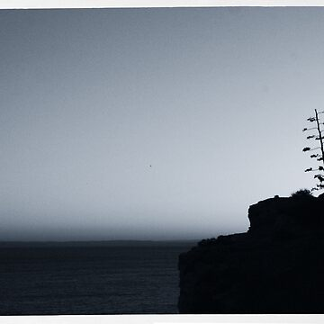 Lonesome Tree by Mary-T77