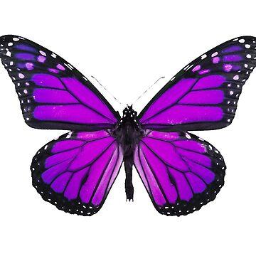 Purple Butterfly by MAMMAJAMMA
