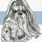 Shih Tzu Father and Son by BarbBarcikKeith