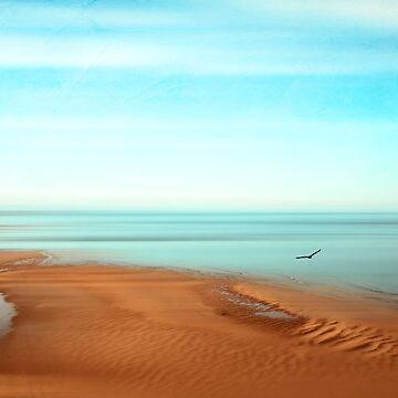 Sense of Space - Tidal Flats  by DyrkWyst
