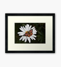 Pudge and Daisy Framed Print