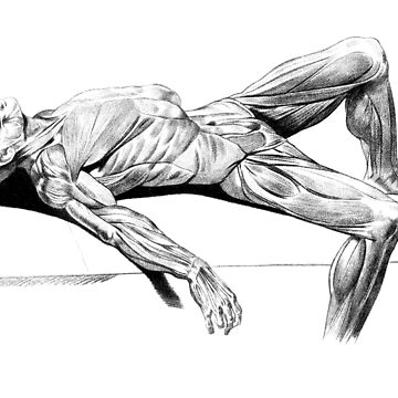 Resting Muscle Man by ScienceSource