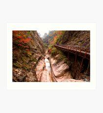 Autumn Gorge - Seoraksan National Park, South Korea Art Print