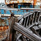 Shipwreck in Brittany. Old wooden ships by JJFarquitectos