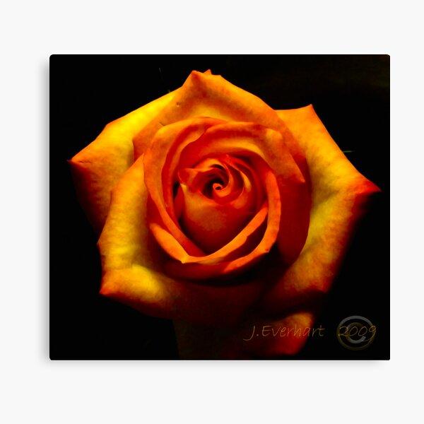 Fire Rose Canvas Print