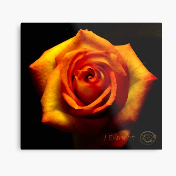 Fire Rose Metal Print