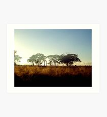 Wheatbelt Dawn Art Print