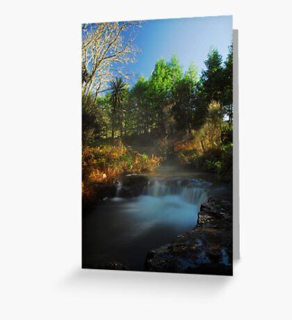 Kerosine creek thermal stream, Rotorua Greeting Card