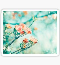 Teal Peach Coral Dogwood Flower Photography, Aqua Turquoise Teal Mint Sticker