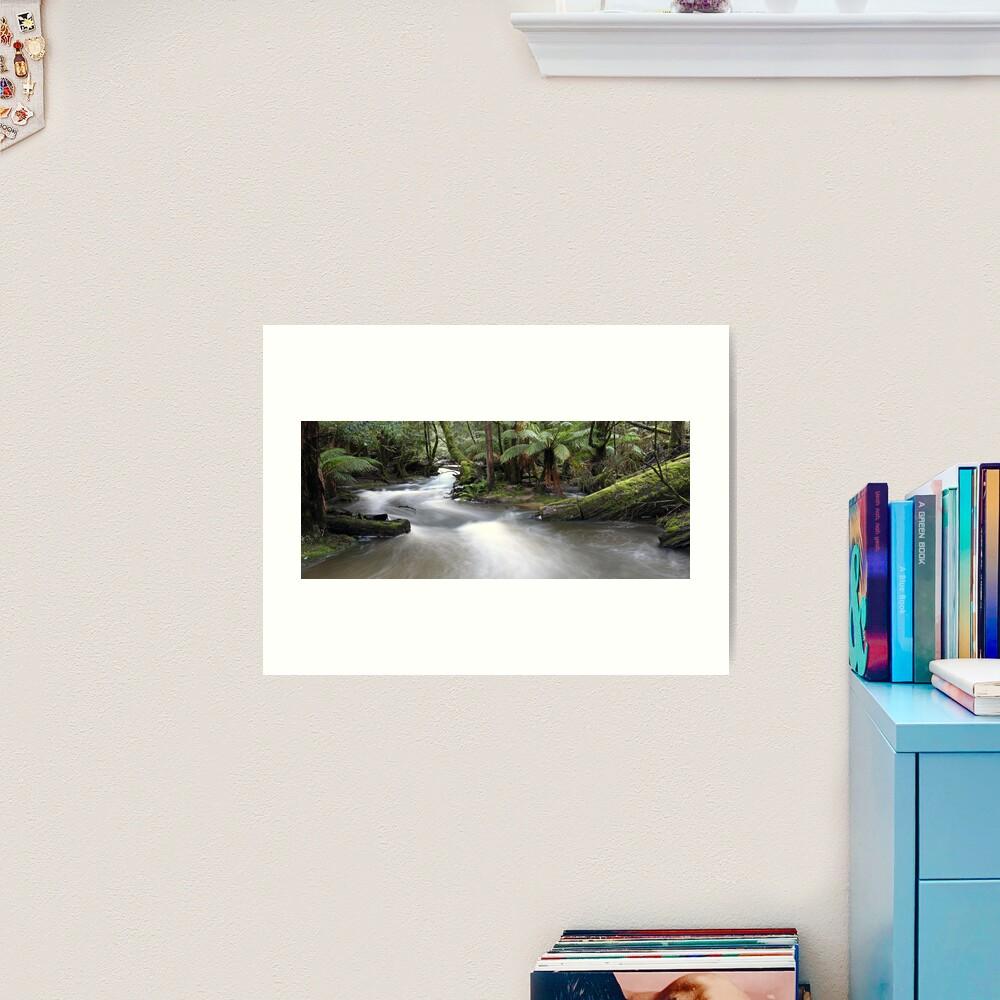 Russell Creek, Tasmania, Australia Art Print