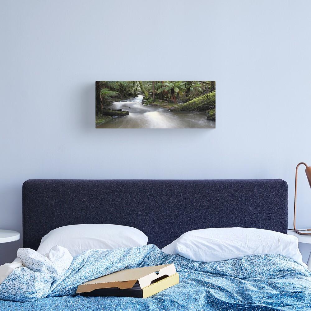 Russell Creek, Tasmania, Australia Canvas Print