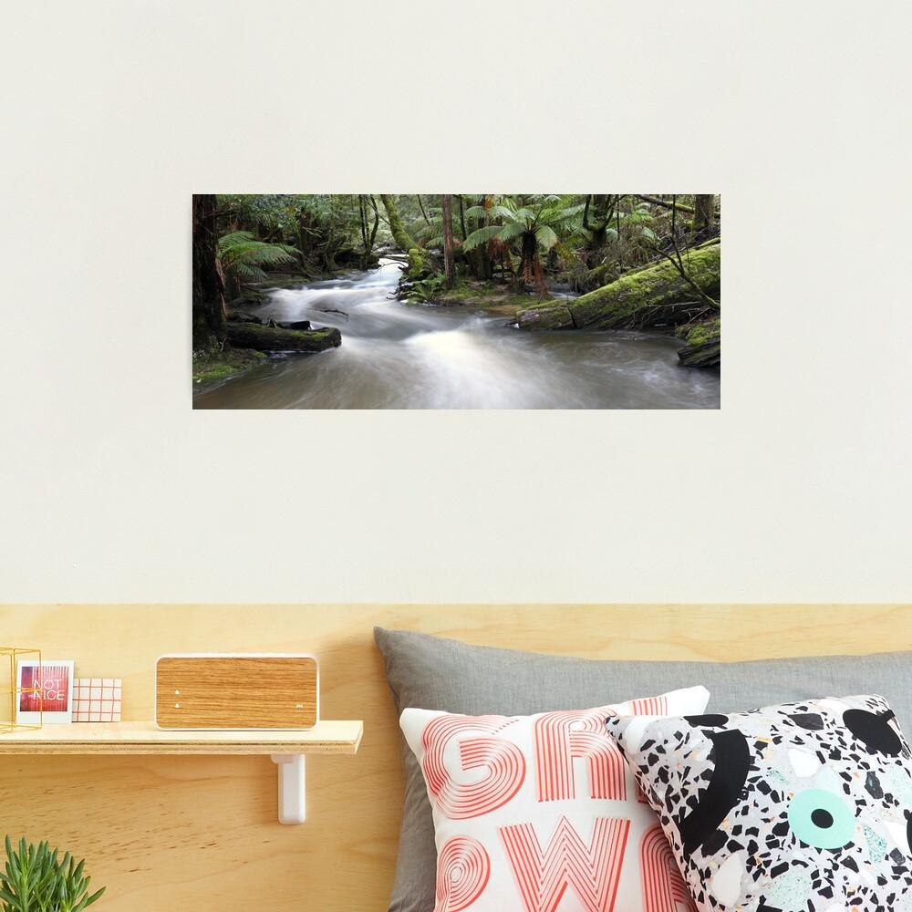 Russell Creek, Tasmania, Australia Photographic Print
