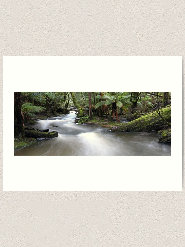Alternate view of Russell Creek, Tasmania, Australia Art Print