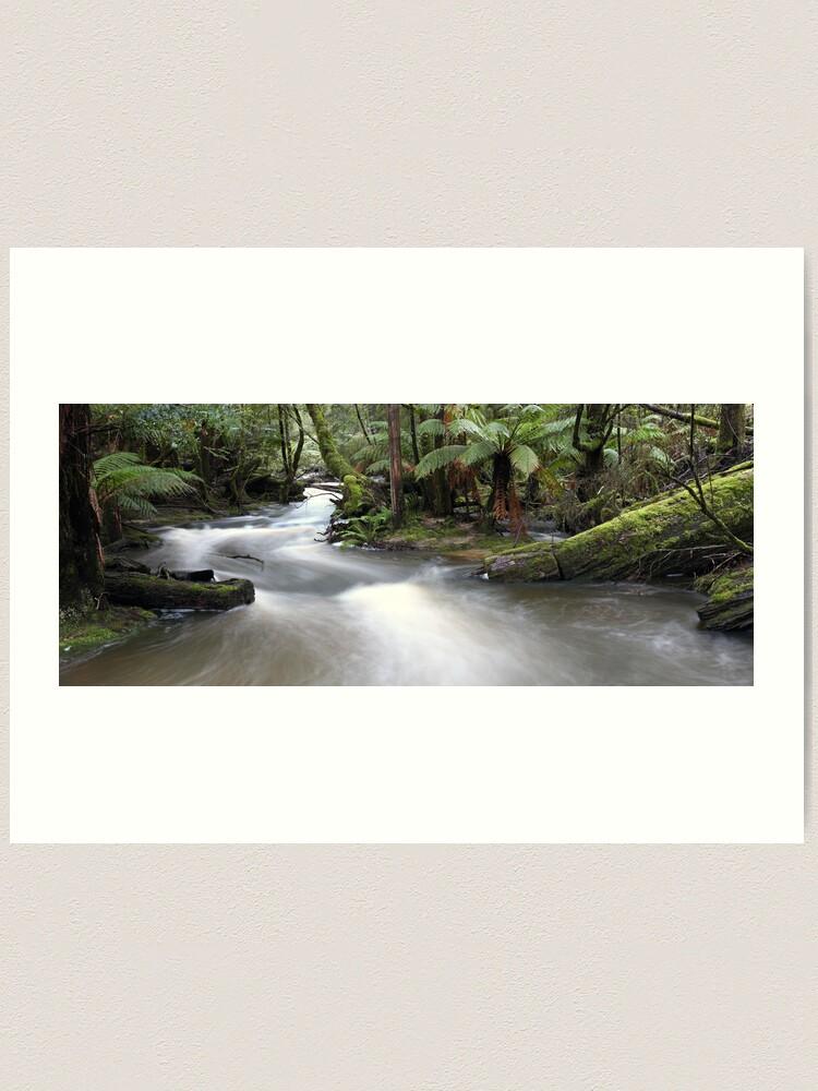 Alternate view of Russell Creek, Tasmania, Australia Art Print