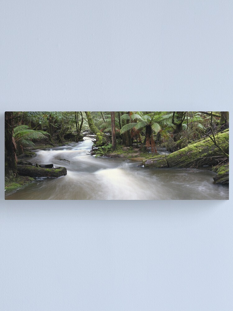 Alternate view of Russell Creek, Tasmania, Australia Canvas Print