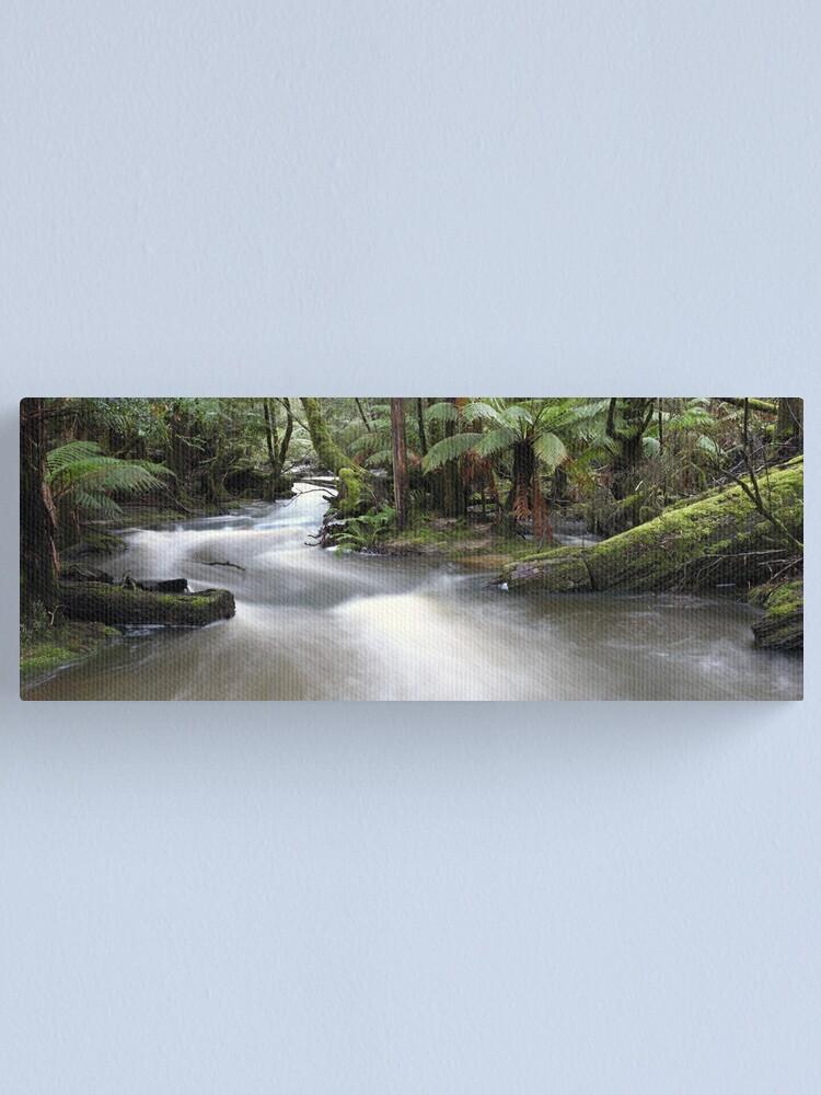 Alternate view of Russell Creek, Tasmania, Australia Canvas Print