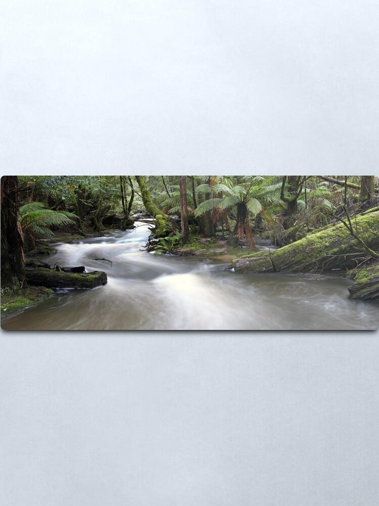 Alternate view of Russell Creek, Tasmania, Australia Metal Print
