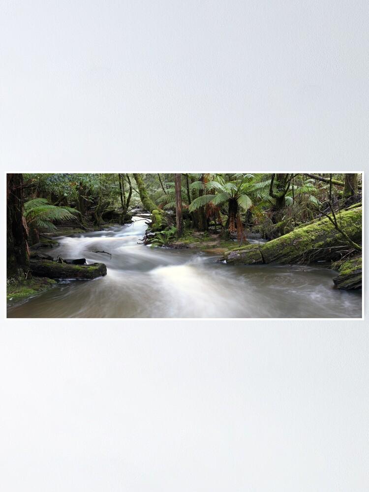 Alternate view of Russell Creek, Tasmania, Australia Poster
