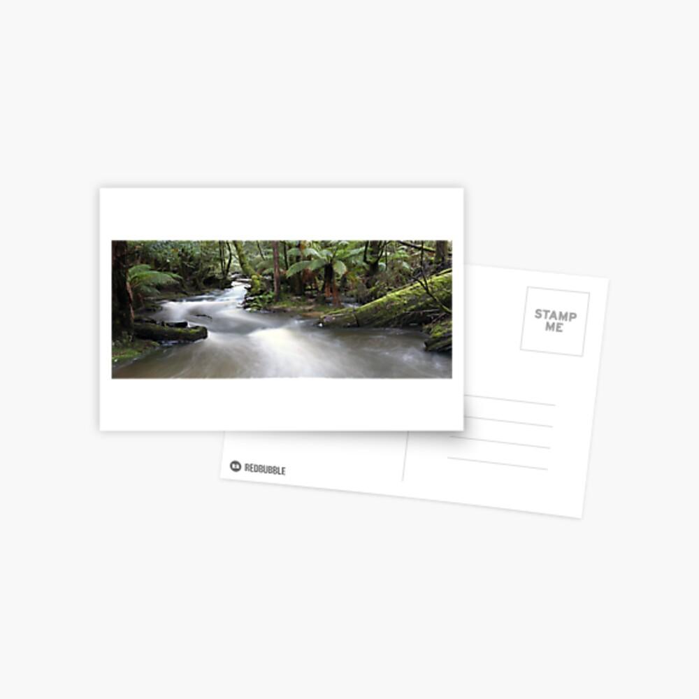 Russell Creek, Tasmania, Australia Postcard