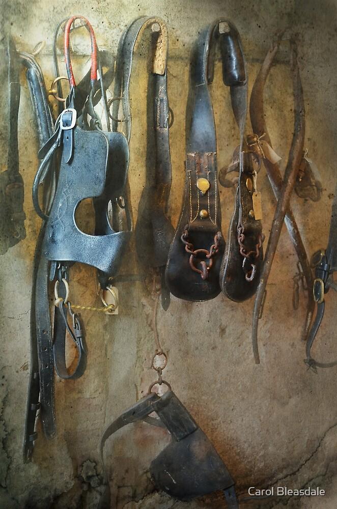 The Tack Room by Carol Bleasdale