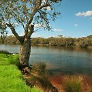 Bassendean  River  by HG. QualityPhotography