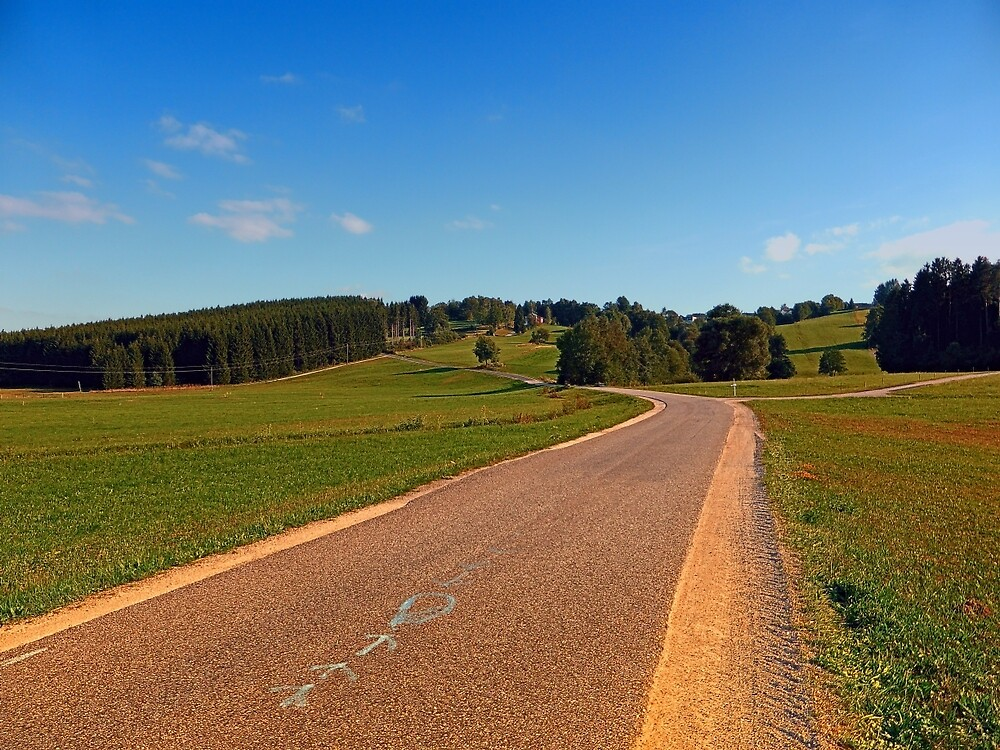 Country road in beautiful scenery | landscape photography by Patrick Jobst