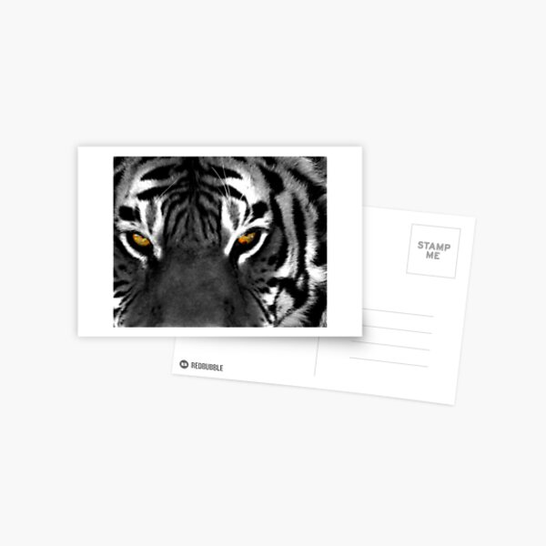 Tiger Eyes I Postcard