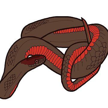 Red Bellied Snake Design by wildlifeandlove