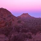West Macdonnell Ranges - Northern Territory by Tony Middleton