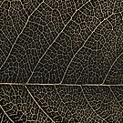 Patterns of Nature - Leaf Veins in Gold on Black Canvas No. 2 by Serge Averbukh