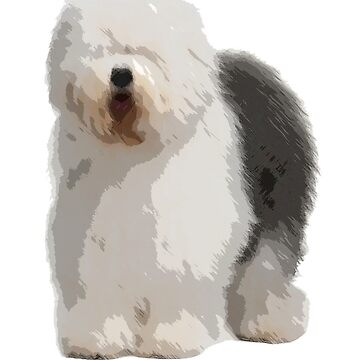 Old English Sheepdog by theboonation