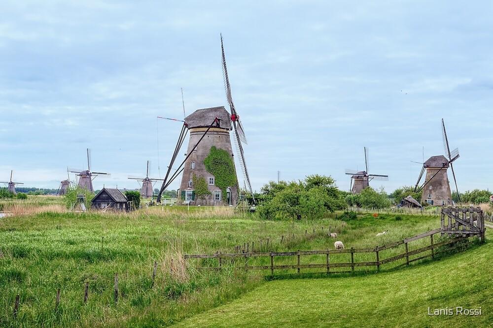 The Windmills of Kinderdijk by Lanis Rossi
