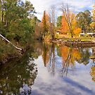 Reflections on Ovens River, Bright by Elana Bailey