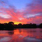 Good Morning Long Island by Sharon A. Henson
