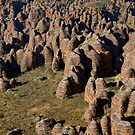 Bungle bungle domes by helicopter  by Stephen Colquitt
