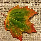 Fall Leaf by Graphxpro