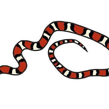 Scarlet Kingsnake Design by wildlifeandlove
