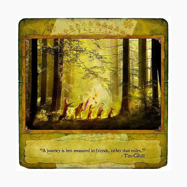 2010 Foxfires Calendar - August Photographic Print