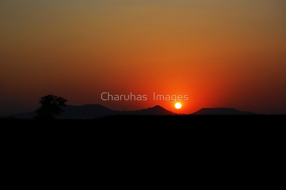 Sunset  by Charuhas  Images