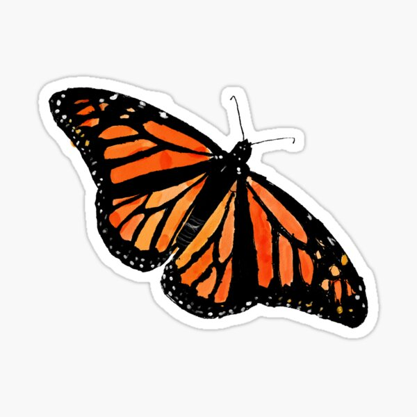Orange butterfly  Sticker