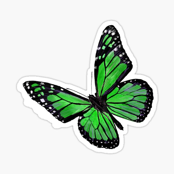 Green butterfly Sticker