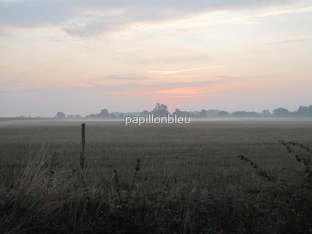 Misty Morn by Pamela Jayne Smith