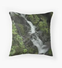 Lower Buttermilk Falls Throw Pillow
