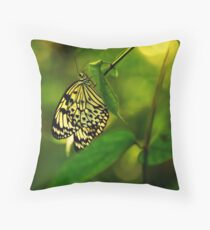 Lightness of Being Throw Pillow
