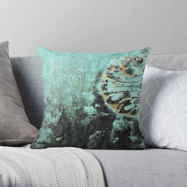 Shipwrecked in copper Throw Pillow