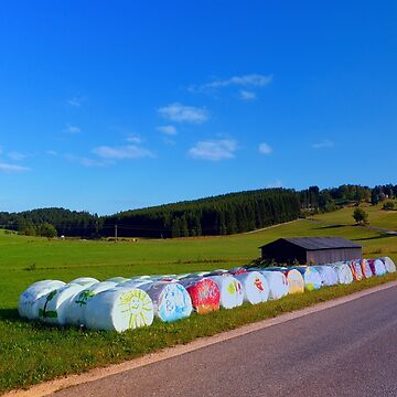 Hayballs along the road | landscape photography by patrickjobst