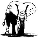 Elephant - Africa by Port-Stevens