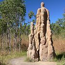 Termite Mounds, Litchfield National Park, NT, Australia by Georg Friedrich